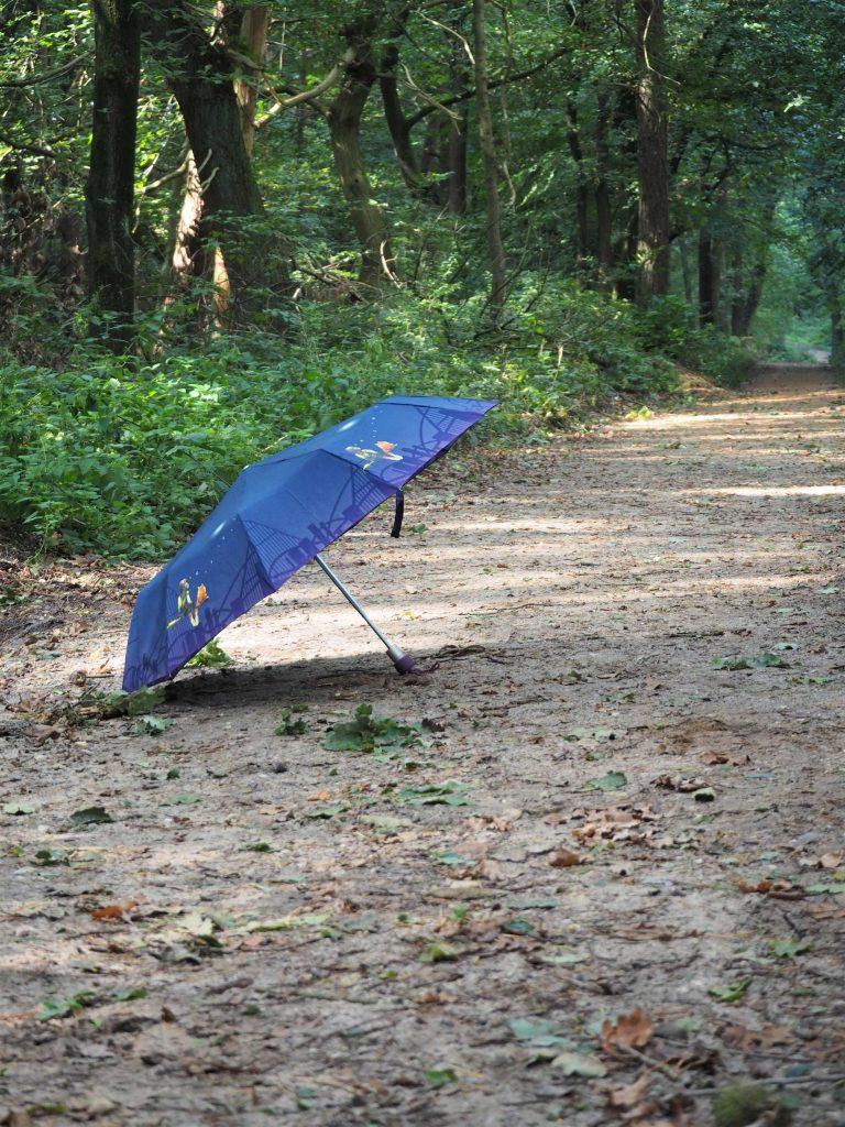 ZEST Regenschirm im Wald
