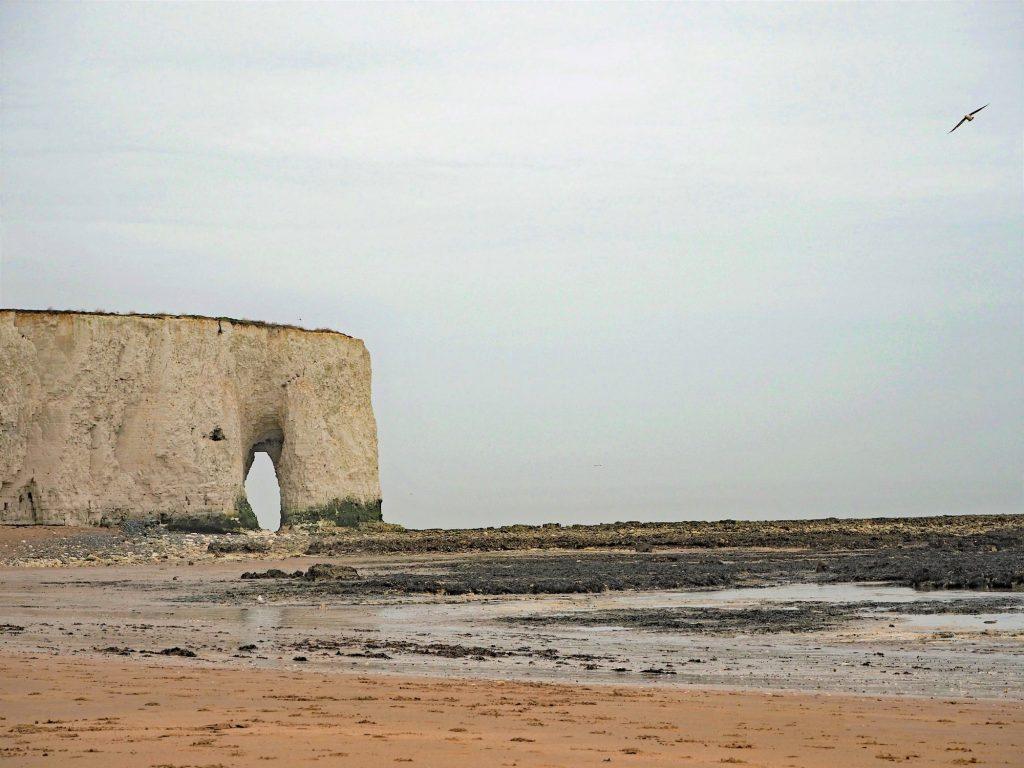 Botany Bay in Kent - die Arche