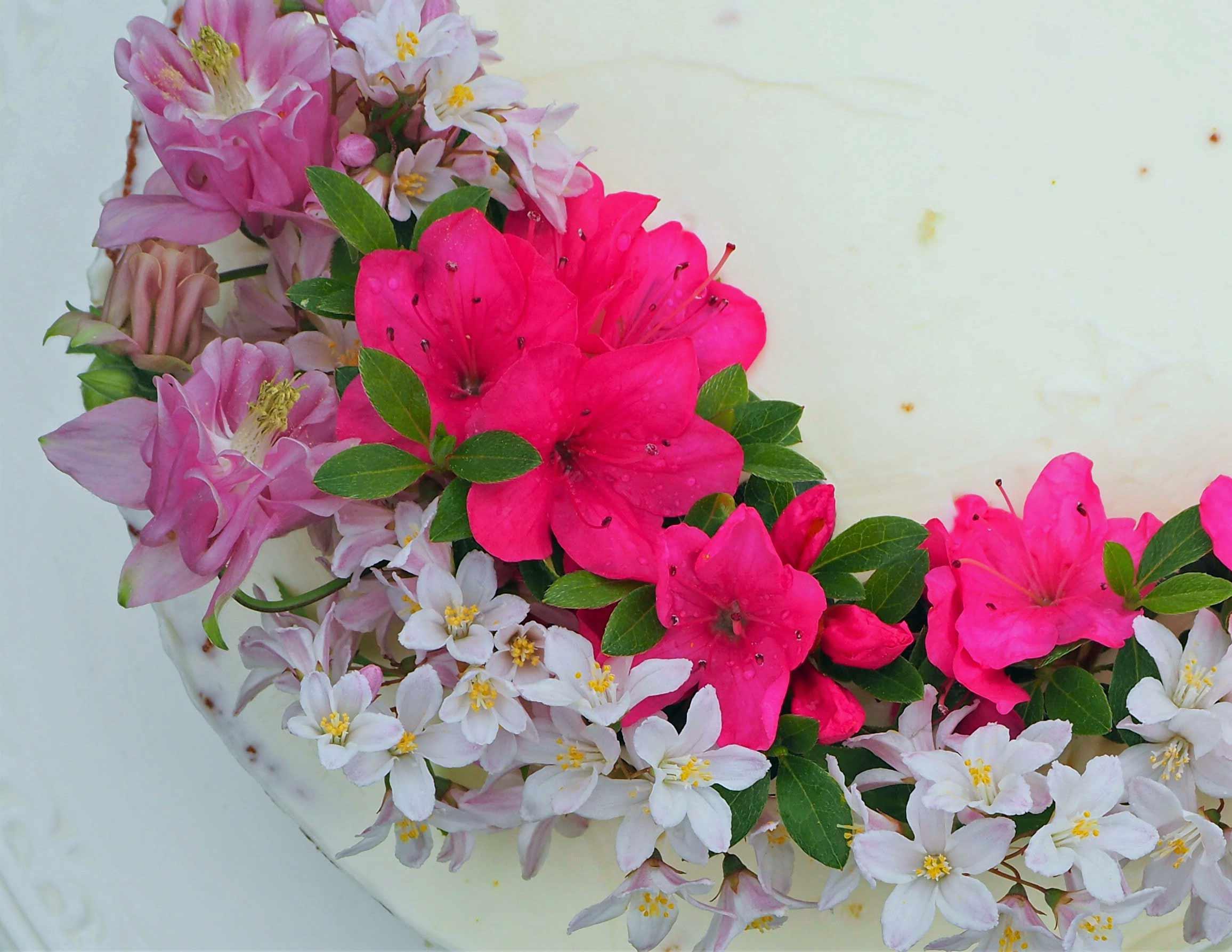 Hochzeitskuchen mit Zitrone und Holunderblütensirup