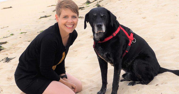 Diese hundefreundlichen Strände in Cornwall solltest du kennen!