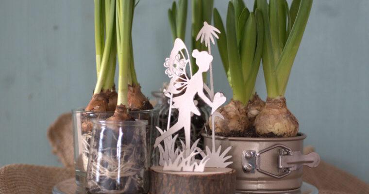 DIY-Tipp: Blumenparadies für Drinnen