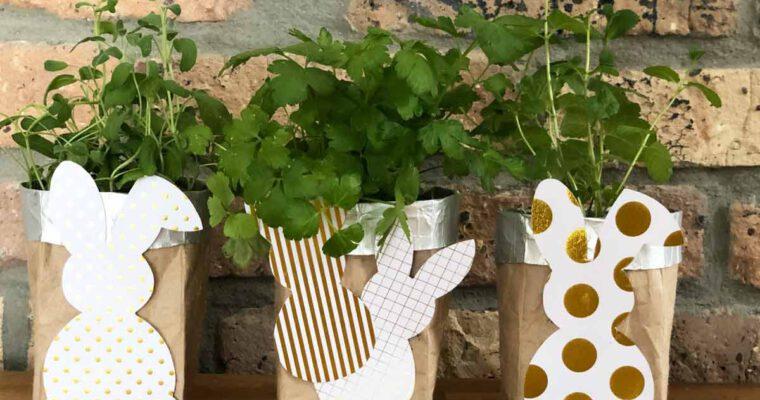 Ab in die Tüte: DIY aus leeren Milchtüten